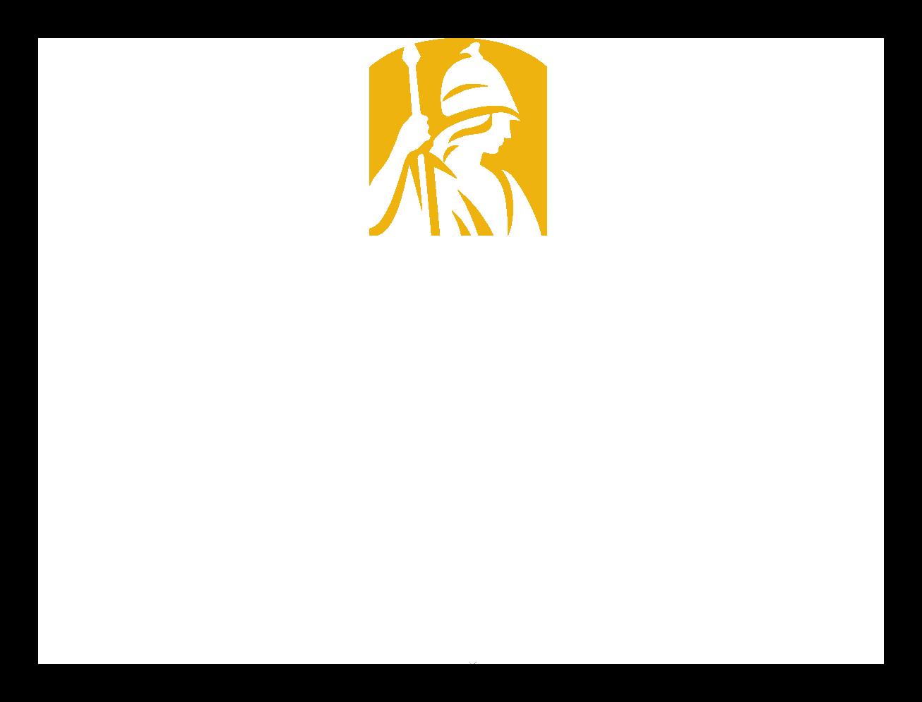 University At Albany white logo
