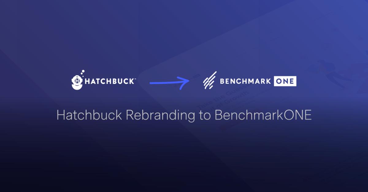 Big Changes Coming Soon: Hatchbuck Rebranding to BenchmarkONE